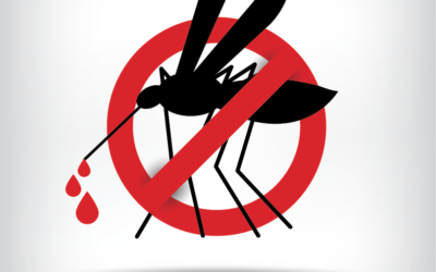 GET THE FACTS- DENGUE FEVER OUTBREAK IN JAMAICA CONFIRMED BY THE MINISTRY OF HEALTH!